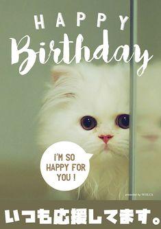 Birthday Messages, Birthday Cards, Happy Birthday Animals, Wish Quotes, Im Happy, Birthday Photos, I Love Cats, Beautiful Gardens, Special Events