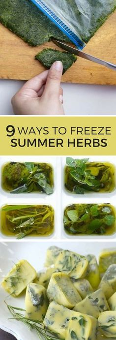 9 Ways to Freeze Herbs // Summer is coming to end an end, but you can keep your herbs fresh all year long! These freezer tricks will keep your cooking flavorful, no matter the season! meals to freeze Clean Eating, Healthy Eating, Drying Herbs, Canning Recipes, Cooking Tips, Freezer Cooking, Freezer Meals, Cooking Herbs, Salads