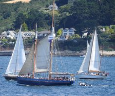 Veterans from Turn to Starboard return to Falmouth on the Spirit of Falmouth