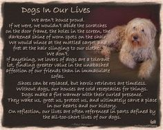 Absolutely 1000% how we feel!!! <3