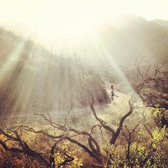 Golden light ride. Follow @bikemag on Instagram. #MTB #biking #photography -  http://www.bikemag.com