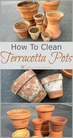 Clean Garden Pots How to clean terracotta pots clean clay pots in 3 easy steps how to clean terracotta pots clean clay pots in 3 easy steps workwithnaturefo