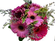 hand-tied bridal bouquet with gerbera daisies & limonium