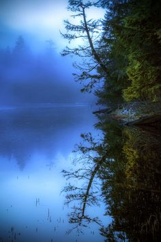 The blue hour by Carlos Rojas on Alaska Cool Pictures, Cool Photos, Beautiful Pictures, Beautiful World, Beautiful Places, Blue Hour, Amazing Nature, Belle Photo, The Great Outdoors