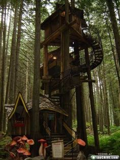 Coolest Tree house yet! I should create a tree house folder for my future kids! Beautiful Tree Houses, Cool Tree Houses, Beautiful Homes, Beautiful Places, Beautiful Bedrooms, Future House, My House, Tree House Designs, In The Tree