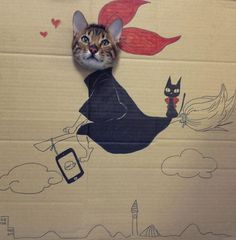 Fun Cardboard Cutouts Result in Comical Kitty Cosplay - My Modern Metropolis - KiKi Kitty!with JiJi? Cool Cats, I Love Cats, Funny Cats, Funny Animals, Cute Animals, Crazy Cat Lady, Crazy Cats, Japan Funny, Gatos Cool