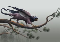 Small Griffin 2 by sandara | NOT OUR ART - Please click artwork for source | WRITING INSPIRATION for Dungeons and Dragons DND Pathfinder PFRPG Warhammer 40k Star Wars Shadowrun Call of Cthulhu and other d20 roleplaying fantasy science fiction scifi horror location equipment monster character game design | Create your own RPG Books w/ www.rpgbard.com