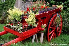 Repursposed wheelbarrow