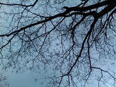 겨울하늘 풍경