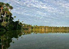 sandoval lake, puerto maldonado peru