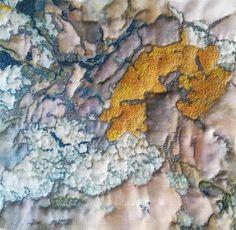 Golden Lichen by Diane Rogers