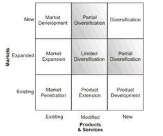Business & Market Strategy