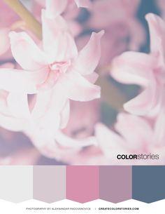 Color Stories: Flora | createcolorstories.com #colorpalettes #flora #colorscheme #flowers