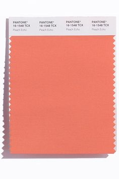 Peach Echo: Pantone Spring 2016 Colors