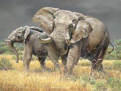 "Aggravated Elephants 30"" x 40"" -ELEPHANTS"
