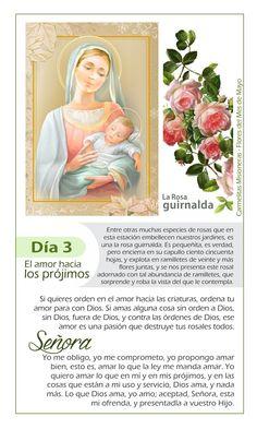 64 Ideas De Flores A María Mayo Mes De Maria Flores María