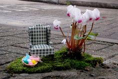 Incredible and Detailed Miniature Pothole Gardens