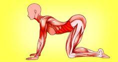 Disse 7 øvelser fra Japan er ideelle for kvindekroppen Yoga Fitness, Fitness Tips, Yoga Position, Coach Sportif, Easy Yoga Poses, Improve Posture, Regular Exercise, Feel Tired, Beginner Yoga