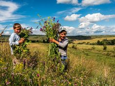 14 Aspects Of Rural Life In Romania That Will Fascinate You Romania, Countryside, To Go, Mountains, Fair Trade, City, World, Travel, The World