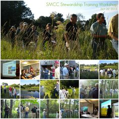 Summer Membership Workshop - Stewardship Training 2013