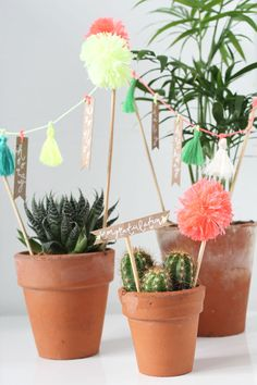 Make these ten minute celebration plants perfect for any party, engagement or wedding. Diy Craft Projects, Projects To Try, Diy Crafts, Flower Shop Decor, Hipster Home Decor, Diy Cadeau, Crafts For Seniors, Colorful Plants, Cactus Y Suculentas