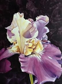 Kay Henry Art|Boise|Watercolors | Previous Work