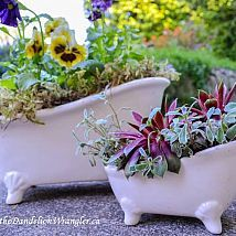 Hometalk :: Ive been thrifting for weeks. Gathering fun and creative containers t…