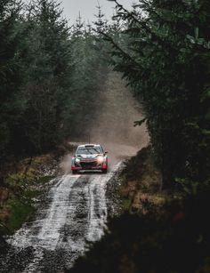 Dani Sordo // Marc Martí Wales Rally GB 2015