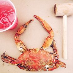 A delicious complete with mallet! Crabs, Maryland, Restaurant, Dinner, Tattoos, Instagram, Dining, Tatuajes, Diner Restaurant