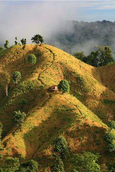 expressions-of-nature:Bandarban, Bangladesh by M Yousuf Tushar