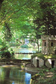 Sintra mystic forest #Portugal