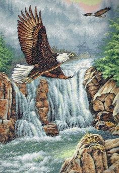 DIMENSIONS-The Gold Collection: Counted Cross Stitch.The Gold Collection Kits are wonderfully detailed with full and half cross stitches. Dimensions - The Gold Collection: Counted Cross Stitch.The Gol Cross Stitch Bird, Cross Stitch Animals, Counted Cross Stitch Kits, Cross Stitching, Cross Stitch Embroidery, Cross Stitch Patterns, Dimensions Cross Stitch, Eagle Art, Scenery Pictures