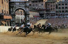 Course La Palio à Sienne : - 50 chevaux morts entre 1970 et 2015 - Dangereuse et mortel pour les chevaux - Grand stresse - Chevaux lancés au galop sur un sol à peine recouvert - Séquelles quand le cheval ressort vivant de cette course folle !!