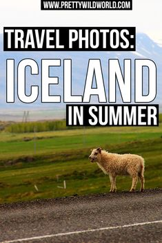 Self guided walking tour reykjavik do it yourself and save money 20 photos of iceland in summer that will inspire you to travel solutioingenieria Images