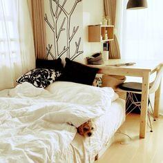 Megさんの、部屋全体,無印良品,照明,IKEA,一人暮らし,北欧,ニトリ,1R,壁に付けられる家具,賃貸 ,ペットと暮らすインテリア,のお部屋写真