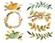Hand painted watercolor fall clipart set includes: 7 digital hand painted watercolor images with transparent background and high resolution. Watercolor Images, Watercolor Flowers, Wreath Drawing, Doodles, Clips, Botanical Art, Light In The Dark, How To Draw Hands, Sketches