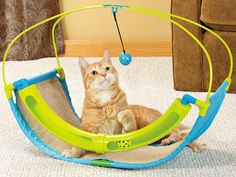 Cats Toys Ideas - This ToyShoppe Playables Kitty Rocking Roller cat toy keeps the ball rolling, enticing your cat to play. The toy features a sisal surface, which is great for scratching. - Ideal toys for small cats Diy Cat Toys, Dog Toys, Toys For Cats, Siberian Cats For Sale, Ideal Toys, Gatos Cats, Cat Playground, Playground Ideas, Small Cat