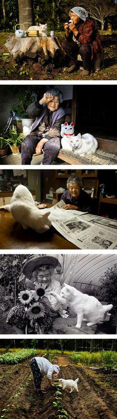 Misao the Big Mama and Fukumaru the Cat. Japan
