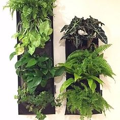 cmsGardens 4 Pocket Gray Vertical Garden Wall Planter Recycled Water Bottles Plastic  CMS Trade Group, LLC