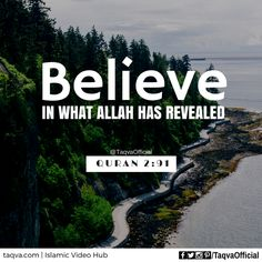 """#Believe in what #Allah has revealed"" #Quran 2:91 ___________________________ #islam #islamic #reminder #quote #quotes #quoteoftheday #ayahoftheday #quranic #verse #islamicquotes #religion #truth #God #faith #iman #belief #muslims #muslim #muslimah #ummah #judaism #jew #christianity #christian #taqva"
