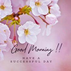 Good Morning Photos Download, Latest Good Morning Images, Good Morning Beautiful Pictures, Good Morning Nature, Good Morning Image Quotes, Good Morning Images Flowers, Good Morning Greeting Cards, Good Morning Messages, Good Morning Greetings