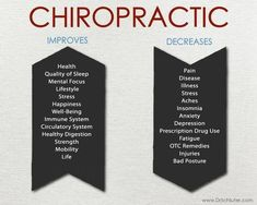 The Health Loft by Dr. Stephanie