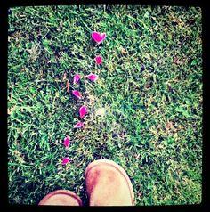 Follow Your Heart - A Poem By Bo Lanier