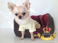 http://altamodaeuropeacanina.com/es/40-pijamas-para-perros