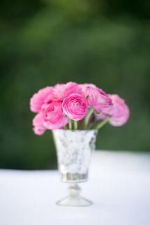 Such pretty pink petals
