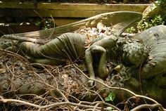 Highgate Cemetery-West London    This beautiful statue lying there as if it would be alive had to be covered with branches. (a wish of the the relatives) but the guide was so kind to clear the grave a little bit for us. I have never seen before in my life such a beautiful touching statue...