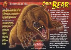 Name: Cave Bear Category: Monsters of the Past Card Number: 113 Front: Cave Bear Monsters of the Past Card 113 front Back: Cave Bear Monsters of the Past Card 113 back Trading Card: Prehistoric World, Prehistoric Creatures, Prehistoric Timeline, Names Of Dinosaurs, Cave Bear, Mysteries Of The World, Adventure Magazine, Falling Kingdoms, Extinct Animals