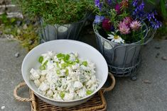 Oppskrifter Archives – Page 13 of 34 – Berit Nordstrand Lchf, Feta, Cauliflower, Cabbage, Recipies, Cheese, Vegetables, Recipes, Cauliflowers
