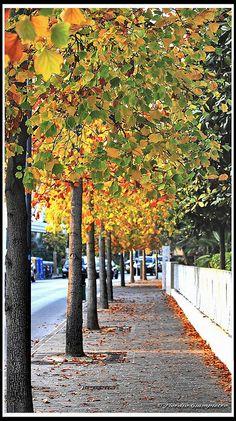 via Valerio Flacco...Abano Terme by GIAMPIETRO ITALY...., via Flickr  #italy #spa #wellness #abano