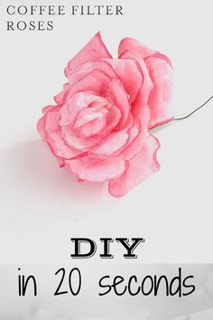 DIY: Make your own coffee filter rose in 20 seconds